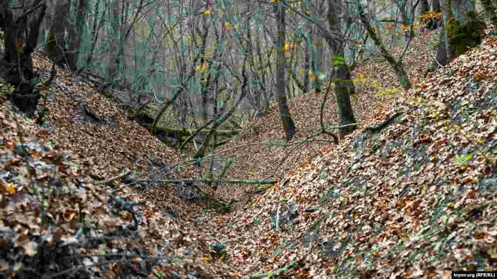 В былые годы талые воды с горных склонов устремлялись по таким лесным оврагам и промоинам прямо к водоохранке