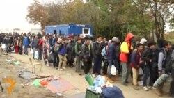 УНХЦР предупредува на проблеми со мигрантите