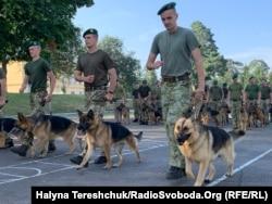 Кінологи зі службовими собаками готуються до військового параду