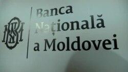 Leul moldovenesc la 25 de ani