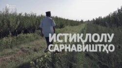 """""""Истиқлолият гуфта нишинем, намешавад"""""""