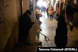 მიხეილ ჭანკოტაძეს გათბობაში ძაღლები ეხმარებიან