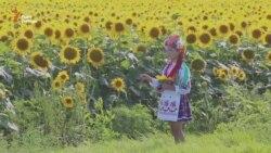 «Україна» чи «край»? – документальний фільм про здобуття Незалежності