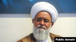 علی اکبر رشاد، عضو شورای عالی انقلاب فرهنگی