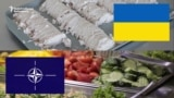 Ukrainian Soldiers Hunger For NATO Grub