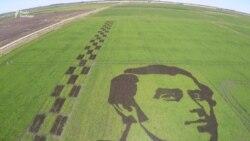 На Херсонщині з рису виростили портрет Шевченка