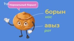 Видеоурок: части тела на татарском