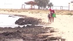 В крымском Заозерном тонны водорослей выбросило штормом на пляж (видео)