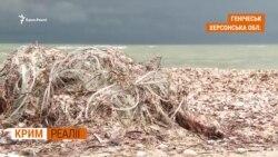 Кримський рибний промисел під російським прапором