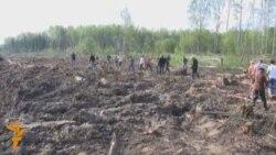 В Химкинский лес вернулись экологи. И нацисты.