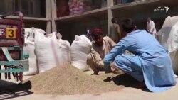 ناامنی در شاهراه عامل کاهش خرید و فروش زیره سفید