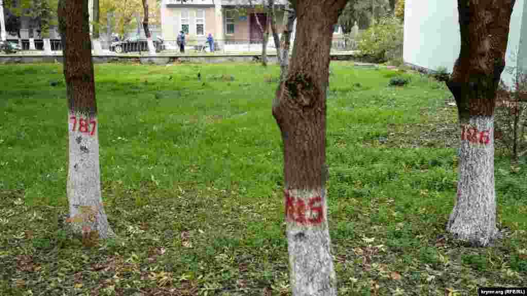 Всі паркові дерева пронумеровані