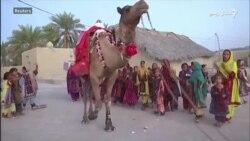 اوښ کتابتون د بلوچستان وروسته پاتې سيمې ماشومانو ته کتابونه رسوي
