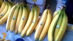 30.10.2014 - Опожарено кино и пораки за ебола во банани