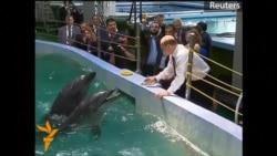 Putin morjla, delfinlə salamlaşır