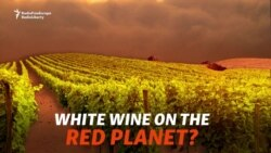 White Wine On The Red Planet