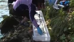Banjalučki mač u kamenu