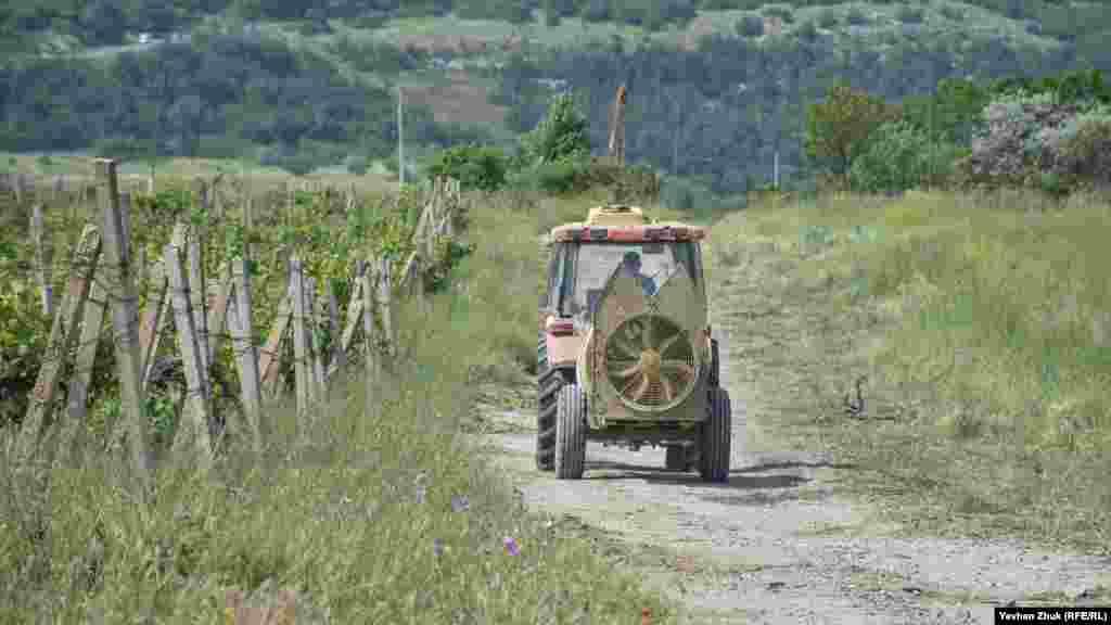 На 10 гектарах бывших виноградников агрофирма «Золотая Балка» планирует построить коттеджный поселок. 19 мая состоялись общественные слушания