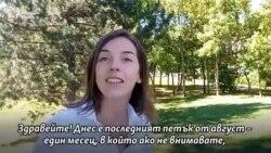 Доктори, плувци, програмисти и Соня Йончева. Новини като хората.