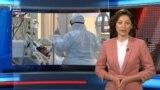 Koronaviruslu xəstələri müalicə edən həkim hökuməti tənqid edir