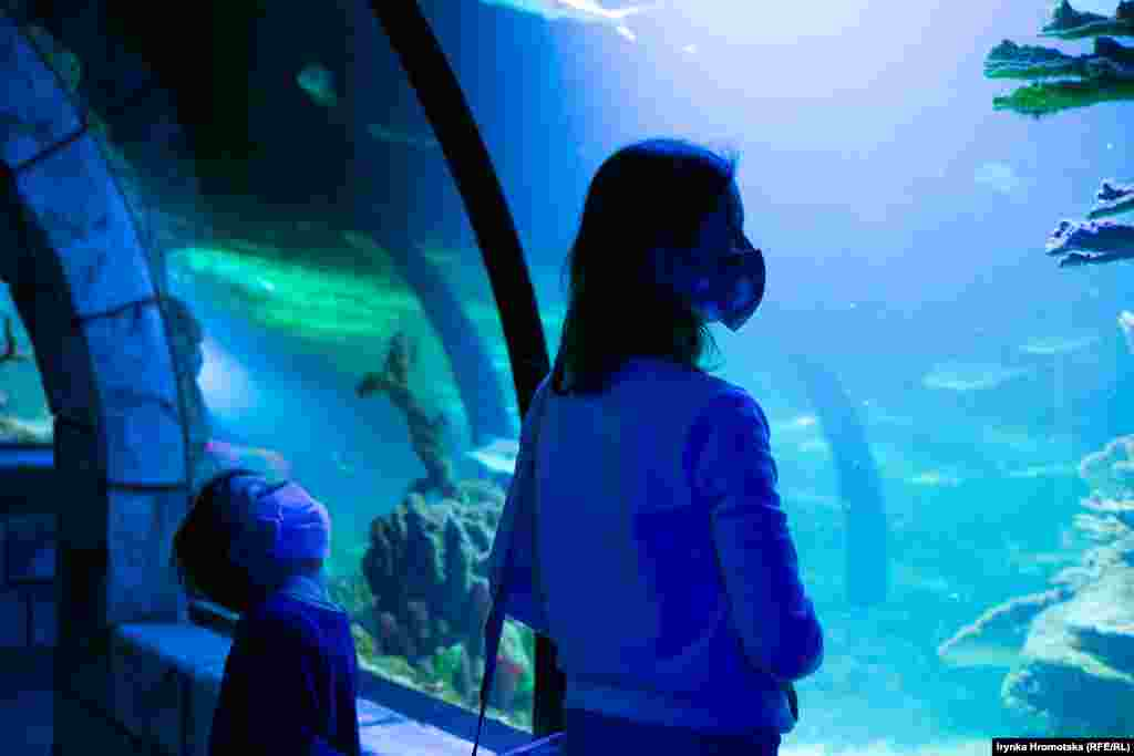Посетители львовского океанариума во время пандемии коронавируса