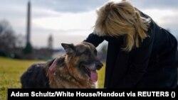 Kutyák és elnöki ereklyék: így néz ki az új Ovális Iroda