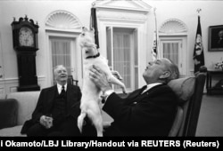 All the way to the White House. Dogs like Lyndon B. Johnson's mutt Yuki, said to have been found by Johnson's daughter at a Texas gas station, have become a U.S. presidential tradition.