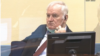 The Netherlands -- The hearing at the Mechanism for International Criminal Tribunals in The Hague in the trial of Ratko Mladic for genocide and other wartime crimes, August 25, 2020.