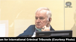 Recursul în procesul lui Ratko Mladic , Haga, 25 august 2020.