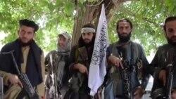 «Талибан» жазгы чабуулдарын кайра баштады