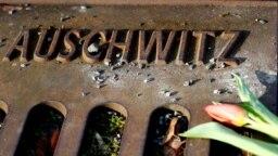 """Egy szál virág az Auschwitz felirat mellett a """"17-es vágány emlékművön"""". Az emlékmű az 1941-45 közötti események emlékére épült, a Berlin-Grunewald vasútállomásról deportálták a zsidókat a koncentrációs táborokba."""
