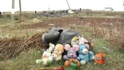 Голландские эксперты прибыли на место крушения боинга рейса МН17 в Украине для поиска останков