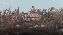 """Анонс фильма: """"Укротители оленей"""""""