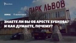 Мнение крымчан: почему арестовали Олега Зубкова? (видео)