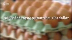 """Siyəzənli sahibkar: """"Yerli quş əti bahalaşacaq, çünki..."""""""