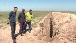 Түркістан облысында жер қоруға қазылған орда жәндіктер қырылып жатыр