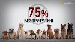 85% відсотків отруєнь собак Києва скоюють комунальні служби − зоозахисниця