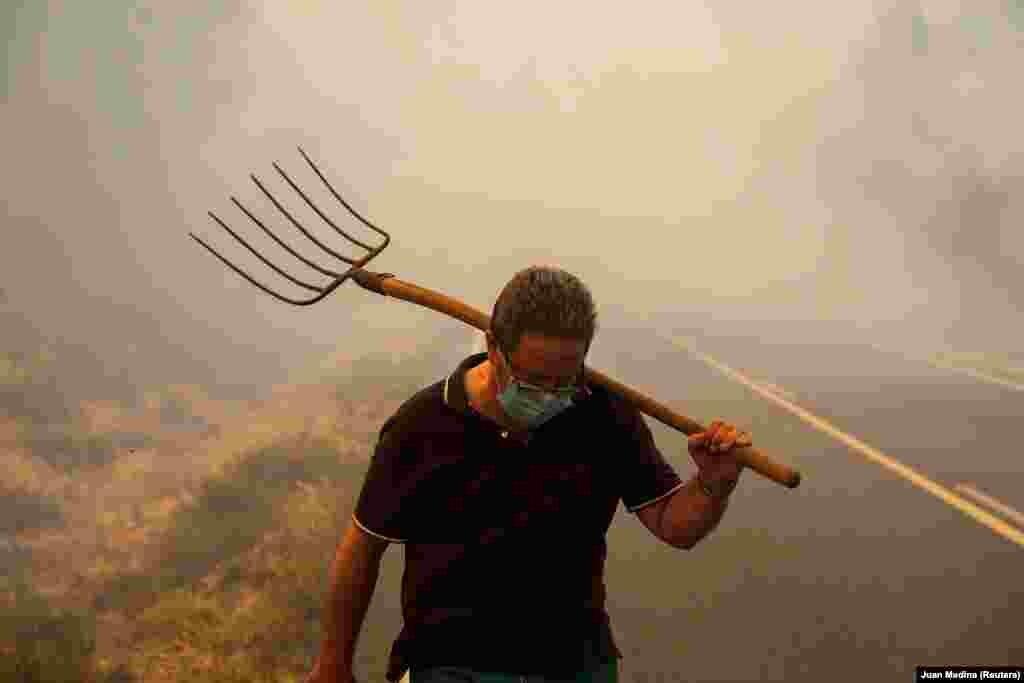 Idén eddig 75 ezer hektárnyi területen égett le az erdő és bozót Spanyolországban