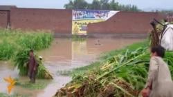03.08.2015 Протести во Мариупол, поплави во Пакистан