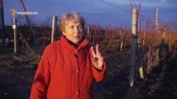Женщины молдавского бизнеса