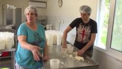 На Кіпрі заробіток фермерів – від 20 тисяч євро на рік