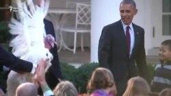 Obama 2 hinduşkanı əfv elədi