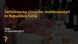 Sărbătoarea vinului moldovenesc în Cehia