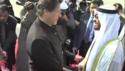 پاکستانیو چارواکو د ابوظبۍ ولي عهد تود هرکلی کړی