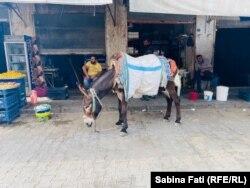 Cu calul în bazar