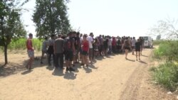 Migrants Camp In Serbian Fields, Avoiding Official Camps