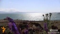 Բնապահպան. «Պետք է փրկել Արարատյան արտեզյան ավազանը»