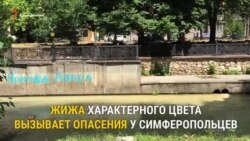 В Симферополе в реку Салгир сливают коричневую массу (видео)