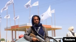 "Боец ""Талибана"" в пригороде Кабула. 14 августа 2021 года"