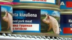 Африканская чума косит литовских свиней